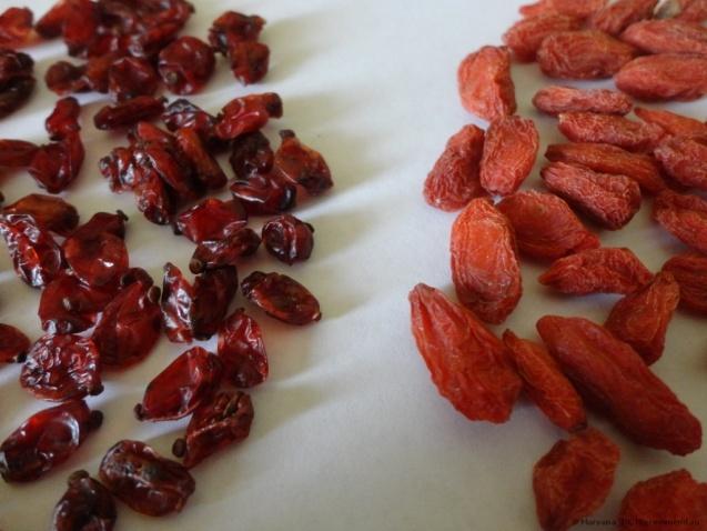 Как выглядит ягода годжи